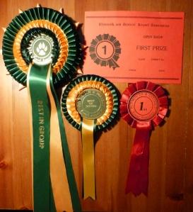 Django's Plymouth awards.