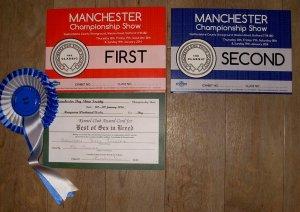 Manchester 2014 wins
