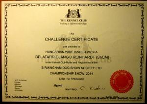 Django's Challenge Certificate.