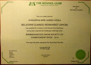 Django's Kennel Club CC and Stud Book number.