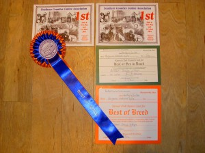 Best Dog & Best Of Breed for Gryphon.