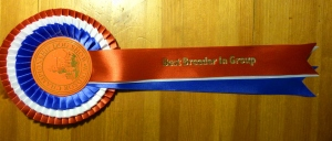 Breeders Group win rosette.