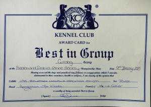 Group Certificate Boston 2015