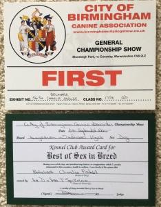Charlie Best Dog certificate Birmingham