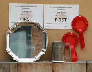 Charlie & Herc's HWVA trophies.