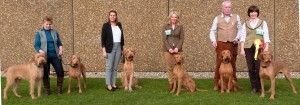 Our Crufts Team -