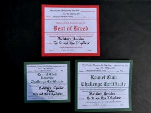 The boys big awards!