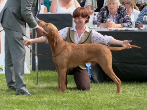 Jenny and Herc in the Group ring with judge Chris Bexon.