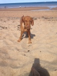 Esther on the beach at 3months